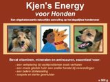 KJEN's® Energy Supplement - 500 gram_