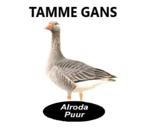 Alroda Puur Tamme Gans (245 gram)
